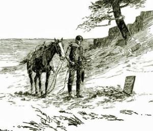 longhorn - lost pardner
