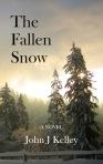 fallen snow - cover