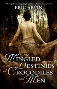 the mingled destinies - cover