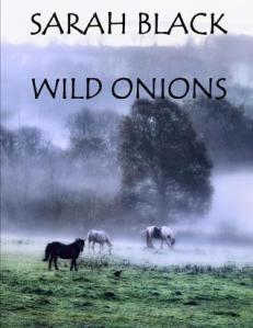 Wild Onions - cover
