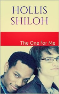 hollis shiloh - cover